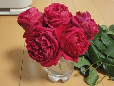 バラ‗花瓶 (2).JPG