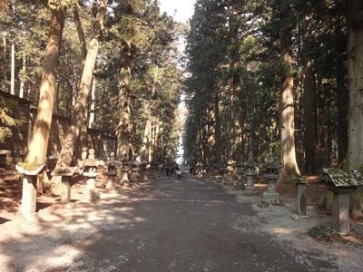 北口本宮富士浅間神社 (1).JPG
