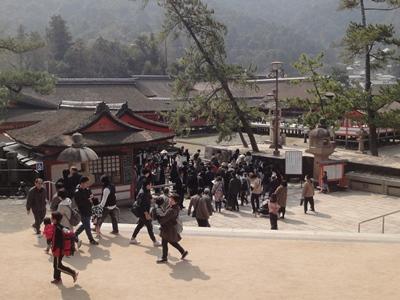 厳島神社 (1).JPG