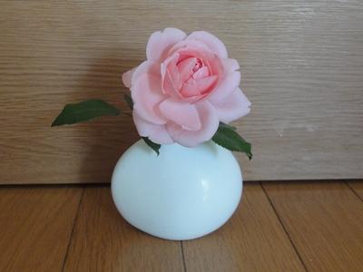 Rose_Oct (2).JPG
