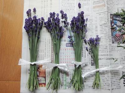 ラベンダー_ドライ (3).JPG