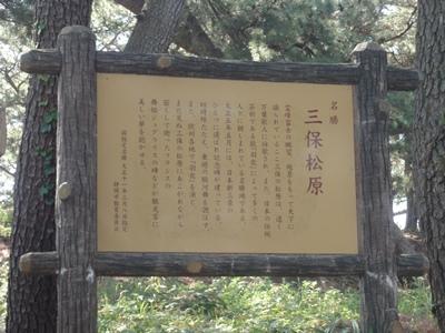 三保の松原 (3).JPG