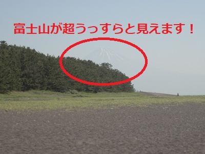 三保の松原 (4).JPG