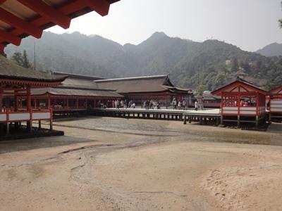 厳島神社 (3).JPG