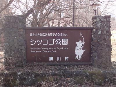 富士御室浅間神社 (9).JPG
