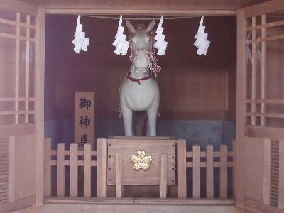富士浅間神社_須走 (9).JPG