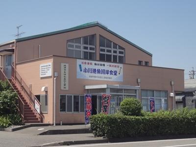 小川港魚河岸食堂 (1).JPG