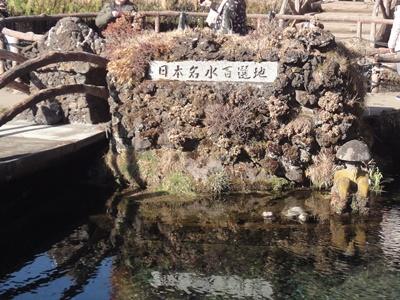 忍野八海 (2).JPG