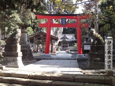 白浜神社 (1).JPG