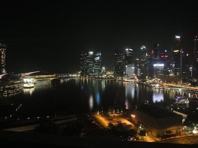 SIN_Night_lights (4).JPG