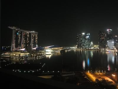 SIN_Night_lights (6).JPG